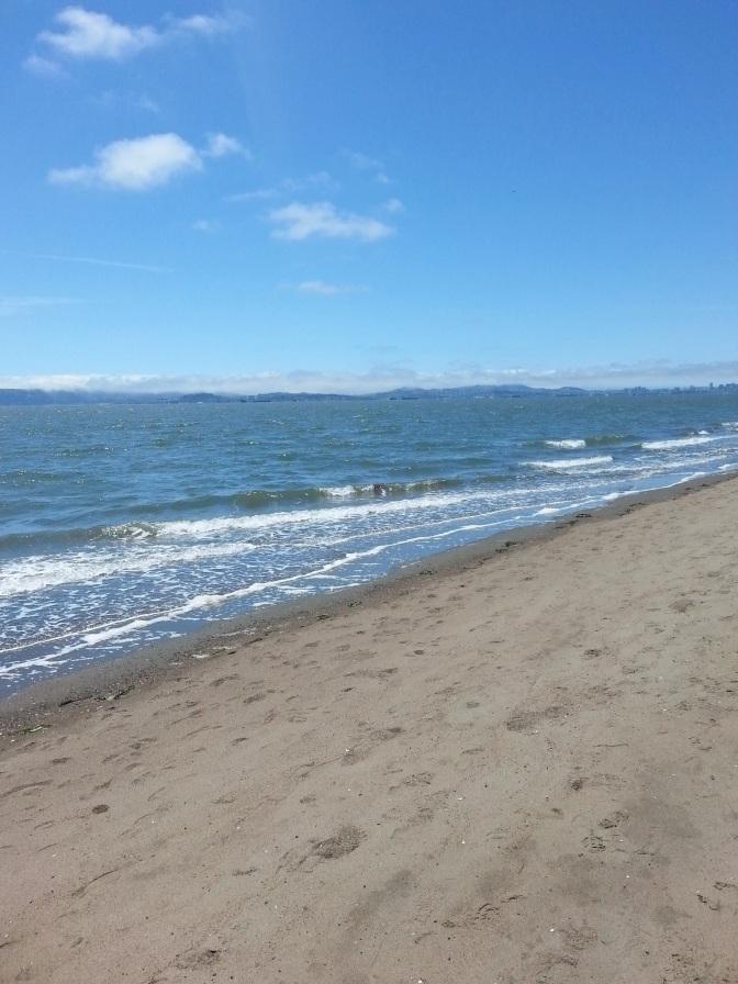 Memories of the San Francisco Bay Area
